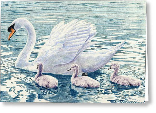 Muted Drawings Greeting Cards - Swan Song Greeting Card by Bev Lewis