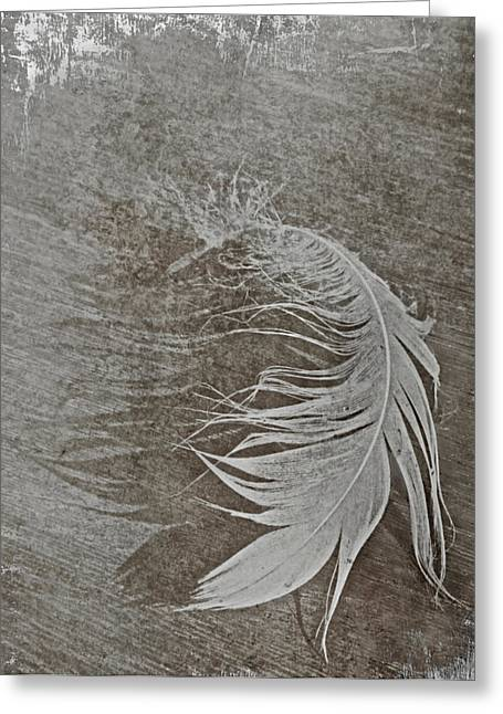White Swan Greeting Cards - Swan Song Greeting Card by Odd Jeppesen