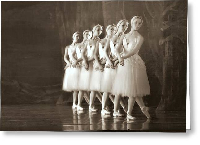 Ballet Dancers Photographs Greeting Cards - Swans Lined Up Greeting Card by Kenneth Mucke