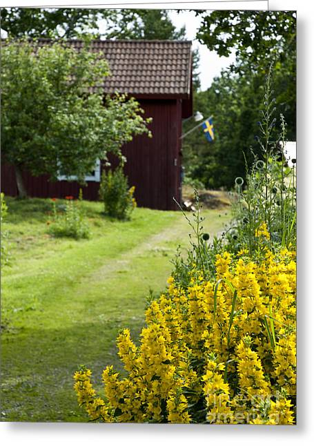 Barn Yard Greeting Cards - Sweden Greeting Card by Micah May