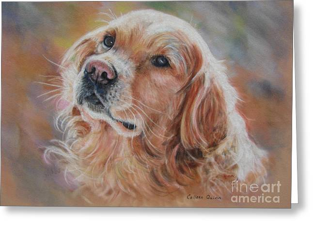 Golden Pastels Greeting Cards - Sweet Bailey Greeting Card by Colleen Quinn