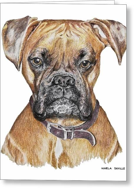 Dog Prints Pastels Greeting Cards - Sweet Boxer Greeting Card by Marla Saville