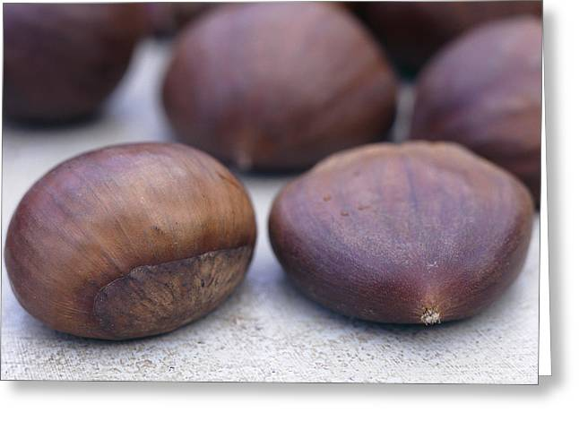 Tannic Greeting Cards - Sweet Chestnuts Greeting Card by Maxine Adcock
