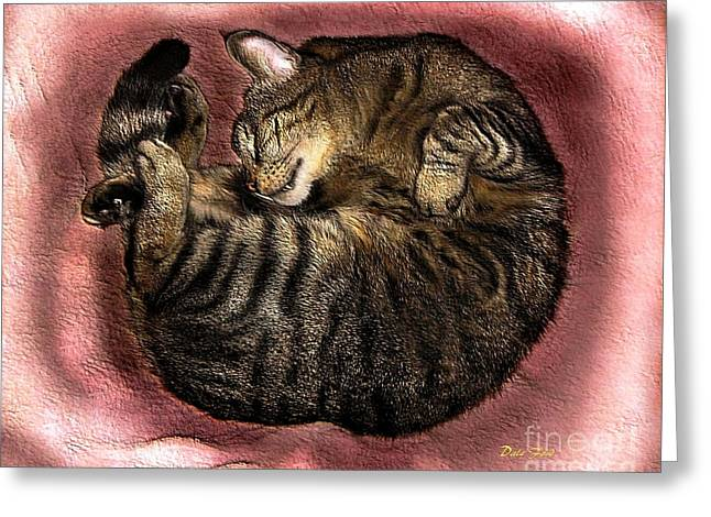 Photos Of Cats Digital Greeting Cards - Sweet Dreams 2 Greeting Card by Dale   Ford