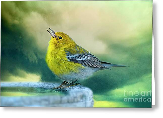 Warblers Greeting Cards - Sweet Little Warbler Greeting Card by Bonnie Barry