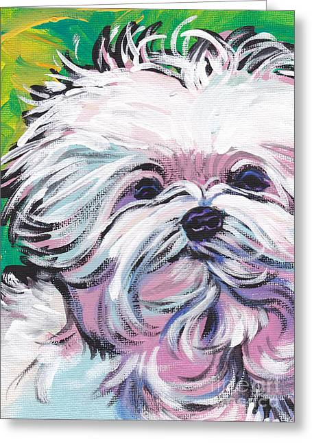 Maltese Dogs Greeting Cards - Sweet Maltese  Greeting Card by Lea