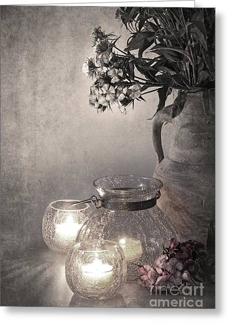 Muted Photographs Greeting Cards - Sweet williams sepia Greeting Card by Jane Rix