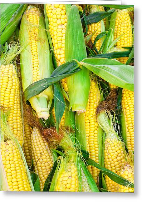 Maze Greeting Cards - Sweetcorn Greeting Card by Tom Gowanlock