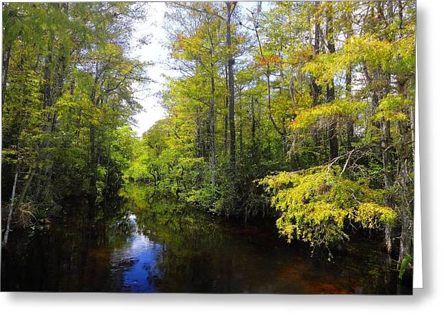 Sweetwater Greeting Cards - Sweetwater Strand - 2 Greeting Card by Rudy Umans