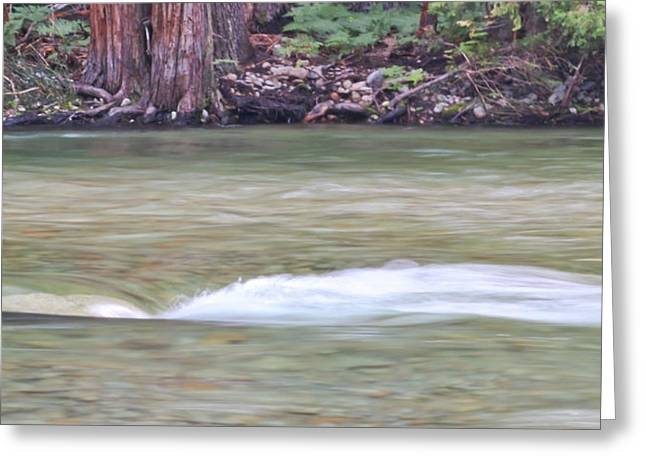 Kings Canyon National Park Greeting Cards - Swift Water At Kings River Greeting Card by Heidi Smith
