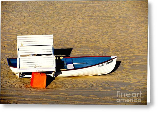 Original Art Photographs Greeting Cards - Swim at Your Own Risk Greeting Card by Colleen Kammerer