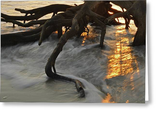 Swirling Sunrise On Jekyll Island Greeting Card by Bruce Gourley