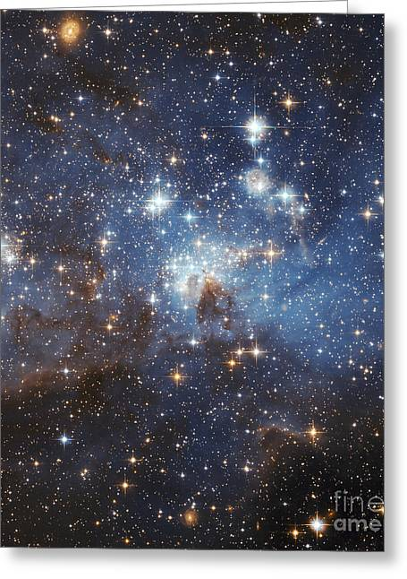 Magellanic Greeting Cards - Swirls Of Gas And Dust Reside In This Greeting Card by Stocktrek Images
