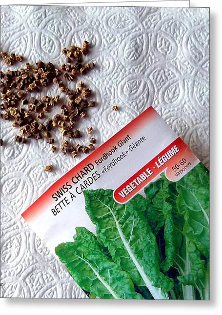 Swiss Photographs Greeting Cards - Swiss Chard Seeds Greeting Card by Will Borden