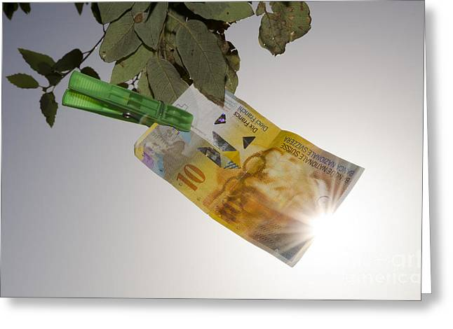 Swiss Franc Hanging In A Tree Greeting Card by Mats Silvan