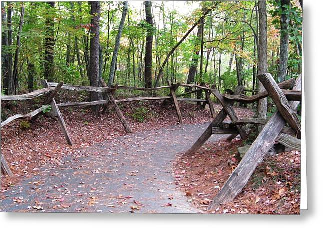 Switchback Walkway Greeting Card by Suzanne  McClain
