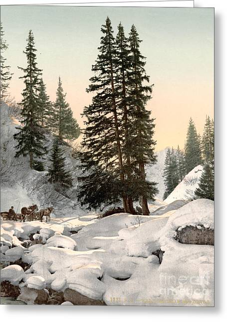 Drawn Landscape Greeting Cards - SWITZERLAND: DAVOS, c1895 Greeting Card by Granger