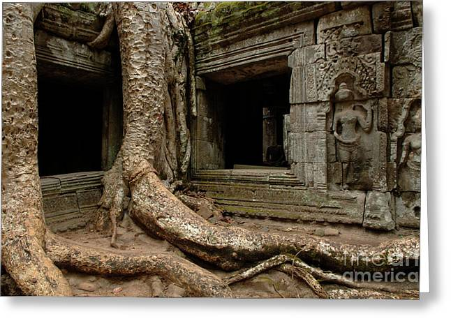 Overgrown Greeting Cards - Ta Prohm Silence 2 Greeting Card by Bob Christopher