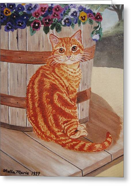 Stella Sherman Greeting Cards - Tabby Cat Greeting Card by Stella Sherman