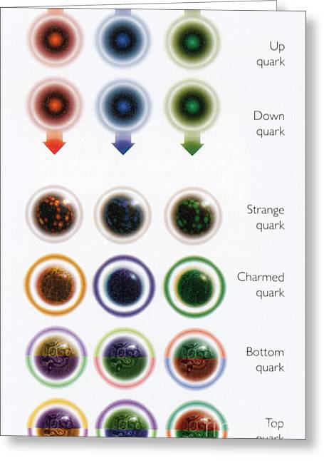 Quark Greeting Cards - Table Of Quarks Greeting Card by Science Source