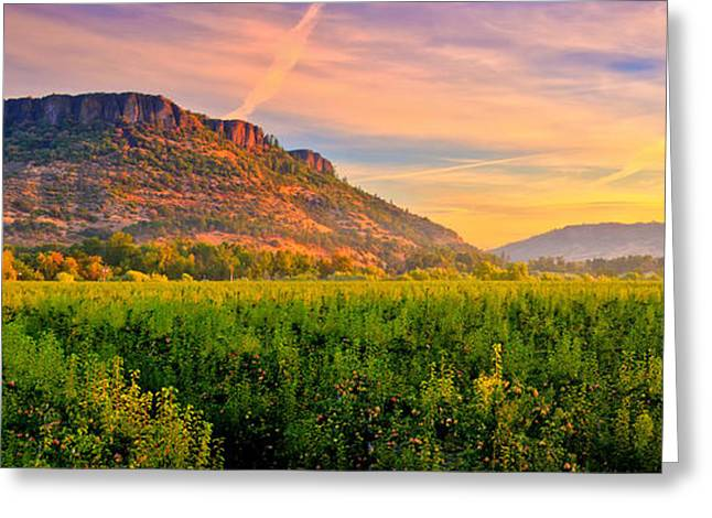 Orchard Greeting Cards - Table Rock Mountain Greeting Card by Alvin Kroon
