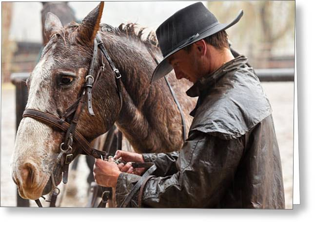 Dude Ranch Greeting Cards - Tacking Up in the Rain Greeting Card by Janice M LeCocq