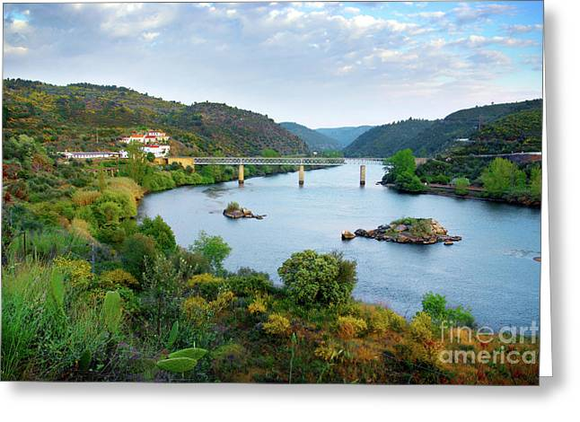 Tagus Landscape Greeting Card by Carlos Caetano