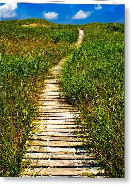 Walk Paths Greeting Cards - Take a Hike Greeting Card by Jarrod Erbe