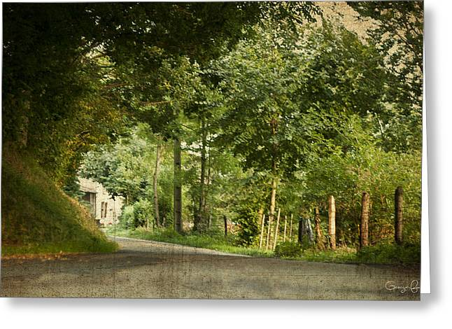 Fowler Park Greeting Cards - Take Me Home Greeting Card by Nomad Art And  Design