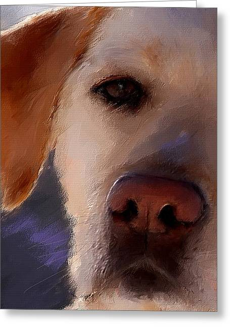 Labrador Greeting Cards - Take Me Greeting Card by Robert Smith