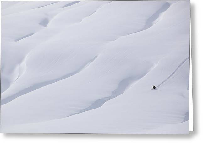 Bridger Teton Greeting Cards - Taking A Ride On A Winter Afternoon Greeting Card by Drew Rush