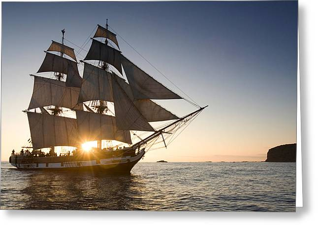 Tall Ships Greeting Cards - Tall Ship at Sunset Greeting Card by Cliff Wassmann