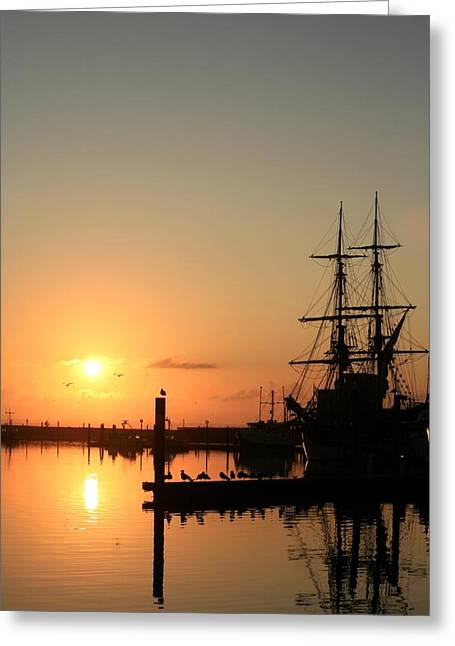 Best Sellers -  - Lady Washington Greeting Cards - Tall Ship Lady Washington at Dawn Greeting Card by Mike Coverdale