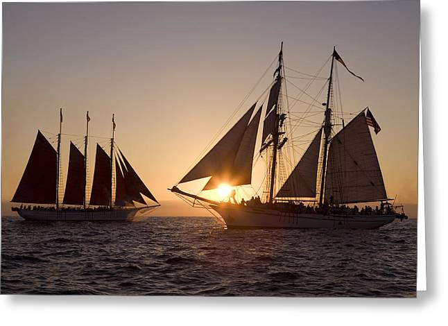 Tall Ships Greeting Cards - Tall ships at sunset Greeting Card by Cliff Wassmann