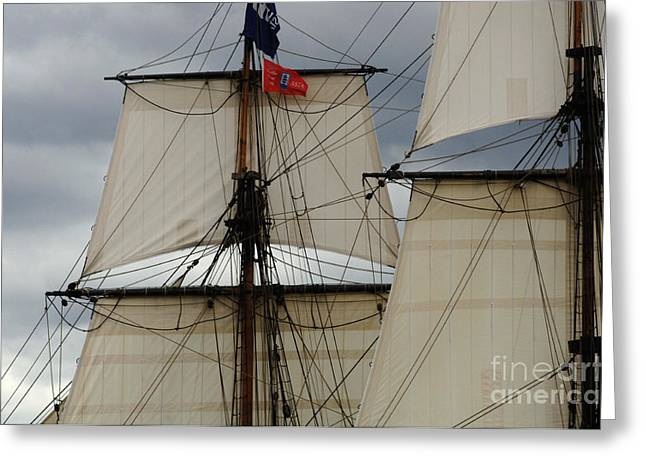 Tall Ships Greeting Cards - Tall Ships Greeting Card by Bob Christopher
