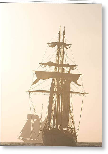 Tall Ships Greeting Cards - Tall ships Festival Greeting Card by Cliff Wassmann