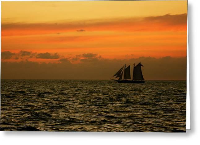 Bonnes Eyes Fine Art Photography Greeting Cards - Tall Ships Sunset Greeting Card by Bonnes Eyes Fine Art Photography