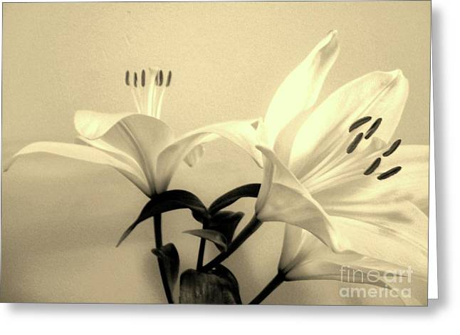 Floral Photos Greeting Cards - Tall Tigerlily ll Greeting Card by Marsha Heiken