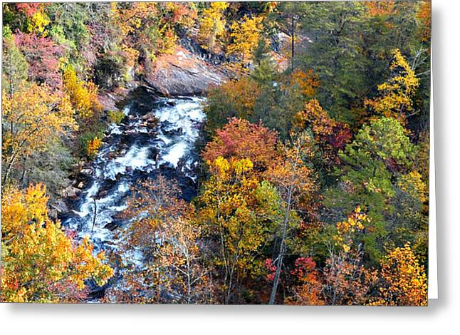 Tallulah River Gorge Greeting Card by Susan Leggett