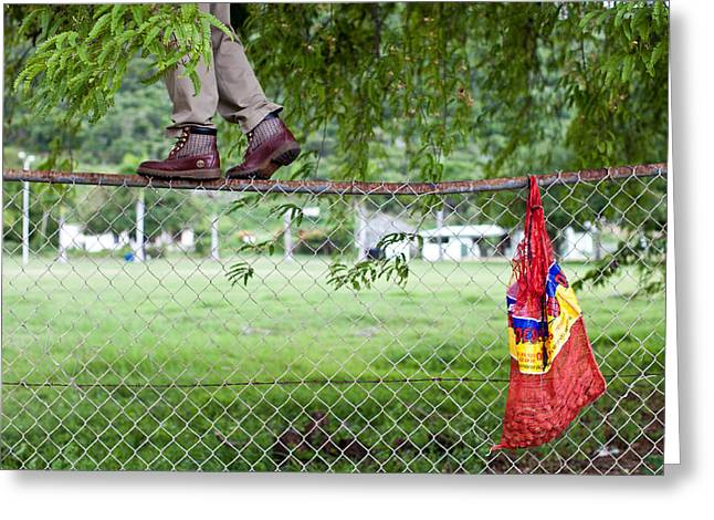 Men Shoes Greeting Cards - Tamarind picking on a fence Greeting Card by Anya Brewley schultheiss