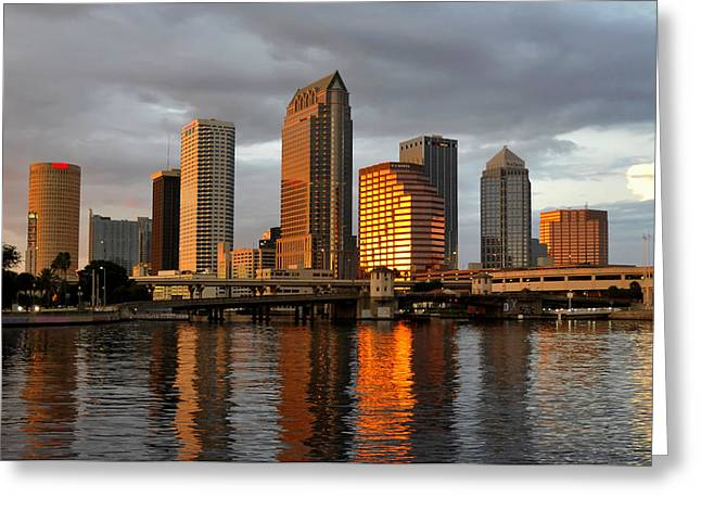 Tampa Bay Florida Greeting Cards - Tampa in reflection Greeting Card by David Lee Thompson
