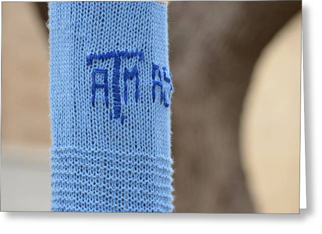 TAMU Astronomy Crocheted Lamppost Greeting Card by Nikki Marie Smith