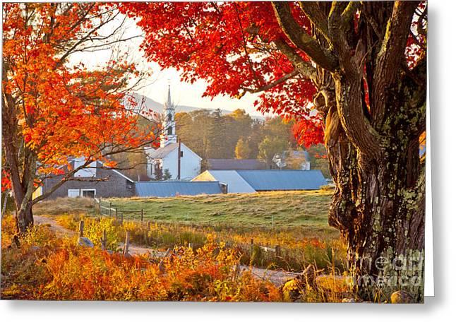 Tamworth Greeting Cards - Tamworth Farm in Autumn Greeting Card by Susan Cole Kelly