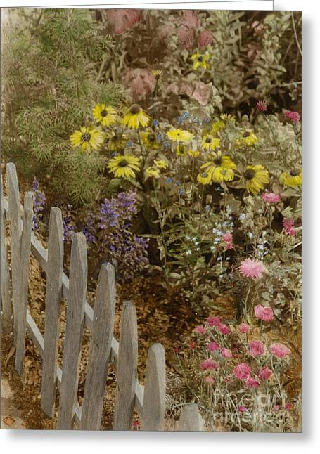 Phot Art Greeting Cards - Tandys Garden Greeting Card by Cindy Roesinger