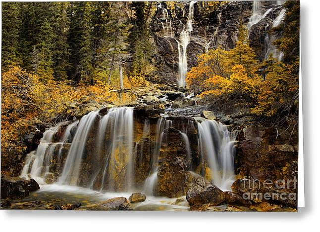 Tangle Falls, Jasper National Park Greeting Card by Keith Kapple