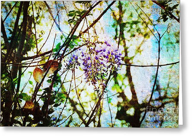 Wisteria Leaves Greeting Cards - Tangled Wisteria Greeting Card by Andee Design