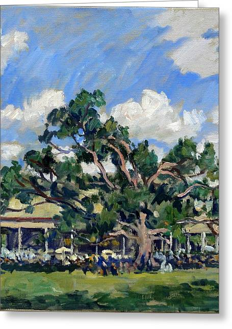 Tanglewood Shade Greeting Card by Thor Wickstrom