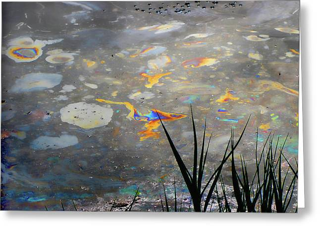 Oil Slick Greeting Cards - Tar Pits Beauty I Greeting Card by Helaine Cummins