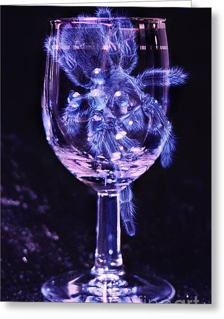 Sparkling Wine Greeting Cards - Tarantula on Wine Goblet Greeting Card by Janeen Wassink Searles