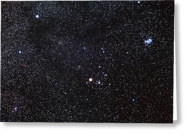 Constellations Photographs Greeting Cards - Taurus Constellation Greeting Card by Luke Dodd